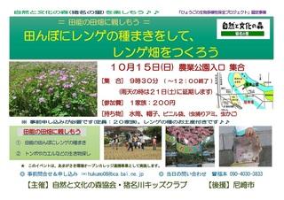 10.15レンゲ畑.jpg