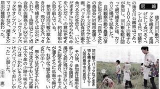 10.5神戸新聞:バッタ試食2.jpg