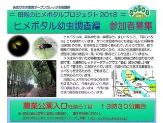11.24&12ヒメボタル幼虫調査:上.jpg