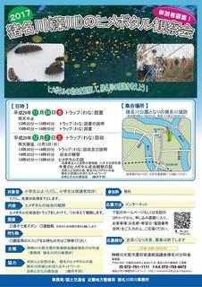 11.24&12.2猪名川(藻川)ヒメボタルチラシ2017表 [更新済み].jpg