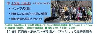 12.1ヒメボタル幼虫調査:下.jpg