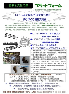 2.20プラット:ヒメぼ�A.jpg