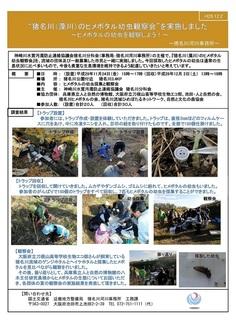 2017ヒメボタル幼虫観察結果報告書.jpg