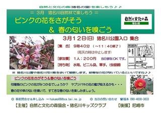 3.12自然林:春を.jpg