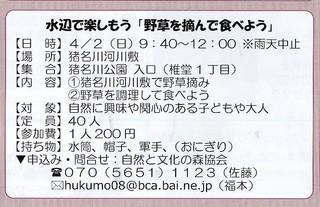4.2水辺野草.jpg