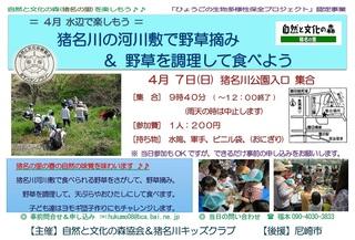 4.7水辺:野草を食べよう.jpg