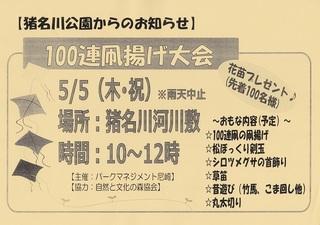 5.5猪名川公園凧揚げ.jpg