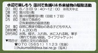 6.3藻川魚捕り.jpg