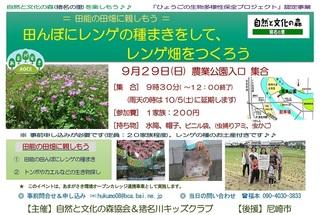 9.29レンゲ畑案内.jpg