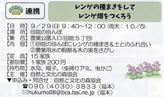 9.29レンゲ種.jpg