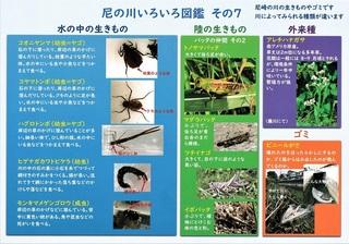 あまっこ川あそび通信2020秋号-02.jpg