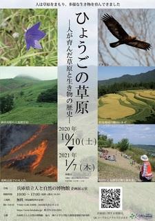 ひょうごの草原1.jpg