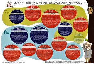 一斉観察会ちらし-002.jpg