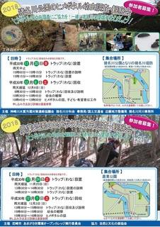 猪名川(藻川)ヒメボタルチラシ2018表裏-01.jpg