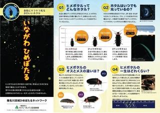 猪名川流域ヒメボタルネット-001.jpg