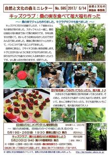 No.595キッズ:桑の実を食べて苺大福も作った2017.5.jpg