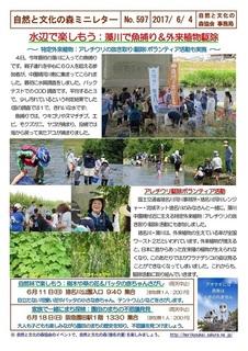 No.597水辺で楽しもう:藻川で魚捕り&外来植物駆除2017.6.jpg