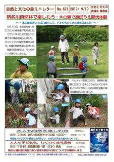 No.621自然林で遊ぼう:木の葉で遊ぼう2017.9.jpg