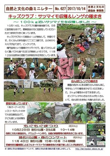 No.627キッズクラブ:サツマイモ収穫&レンゲの種まき2017.10.jpg