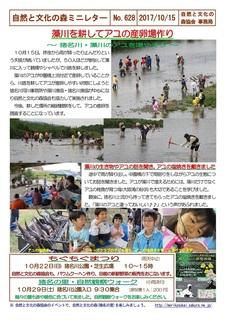 No.628鮎の産卵場作り2017.10.jpg