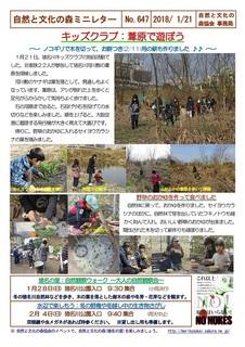 No.647キッズクラブ:葦原で遊ぼう2018.1.jpg