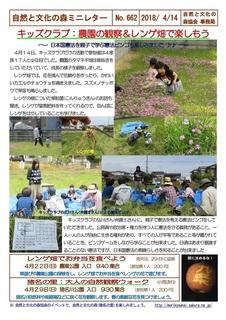 No.662キッズクラブ:農園の観察&レンゲ畑で楽しもう2018.4.jpg