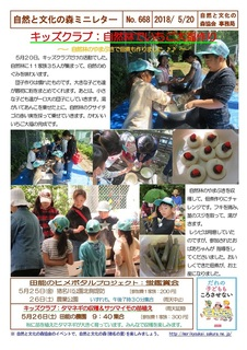 No.668キッズクラブ:自然林でいちご大福作り2018.5.jpg