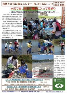 No.784水辺で楽しもう:藻川に入って魚捕り2020.7.jpg