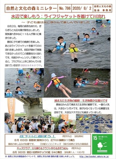 No.786水辺で楽しもう:ライフジャケットを着けて川流れ2020.8.2.jpg