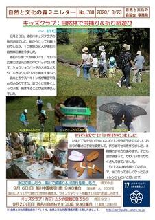 No.788キッズクラブ:虫捕り&折り紙遊び2020.8.jpg