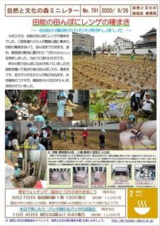 No.791田能の田んぼにレンゲの種まき2020.9.26.jpg